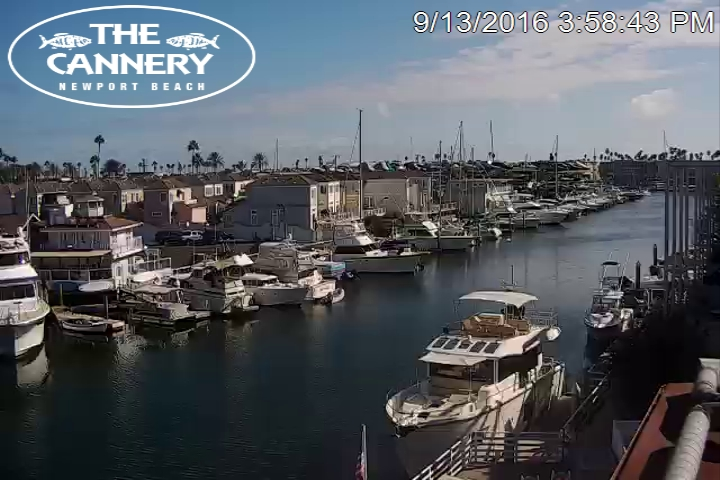 Cannery Seafood of the Pacific Newport Beach California